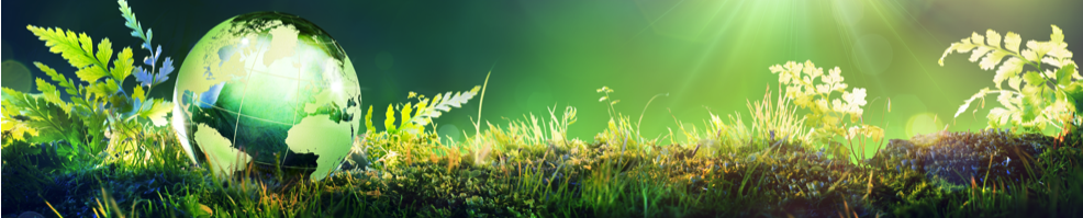 Sites sols pollués : Glossaire environnement